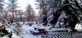 Luty - zimowe spacery po ogrodzie i czas planowania nowych nasadzeń roślin
