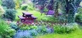 Najpopularniejsze byliny wieloletnie kwitnące wiosną