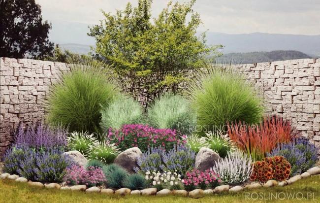 """Gotowy projekt ogrodu - """"Rabata pod słońcem Toskanii"""". Zestaw (Projekt + 73 sadzonki)"""