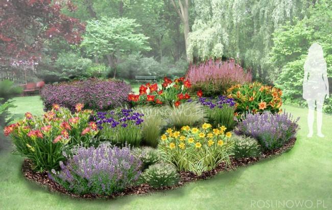 """Gotowy projekt ogrodu - """"Rabata z liliowcami"""". Zestaw (Projekt + 60 sadzonek)"""