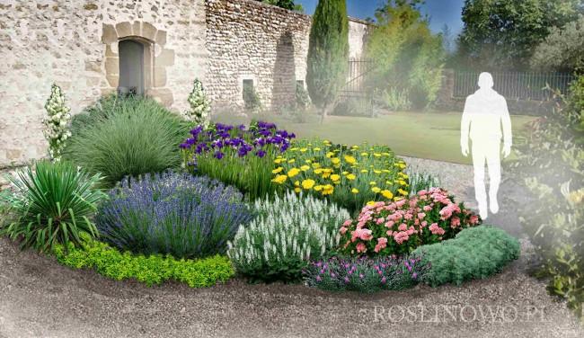 """Gotowy projekt ogrodu - """"Rabata śródziemnomorska"""". Zestaw (64 sadzonki + AGROTKANINA PROJEKT 1:1)"""
