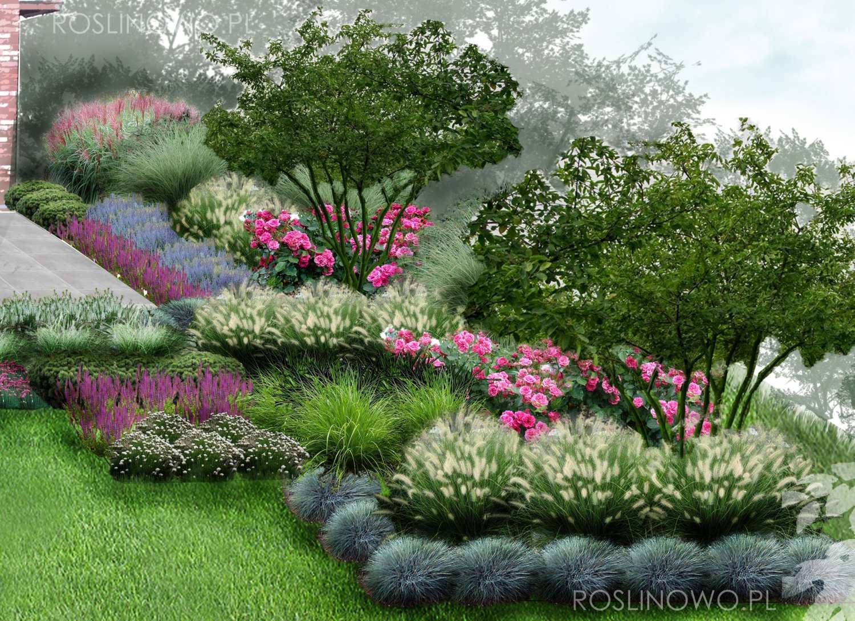 Projektowane rośliny do geometrycznego ogrodu przy tarasie