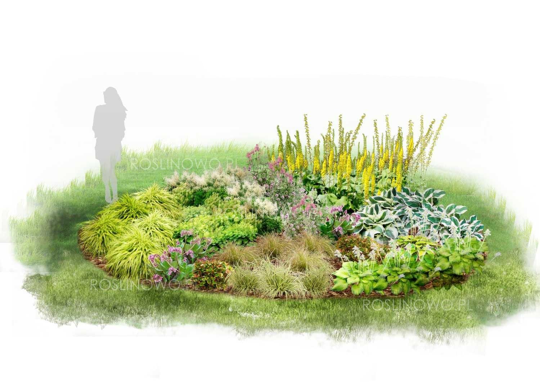 Widok na Rabatę Cienisty Zakątek w zestawie z sadzonkami roślin ogrodowych.