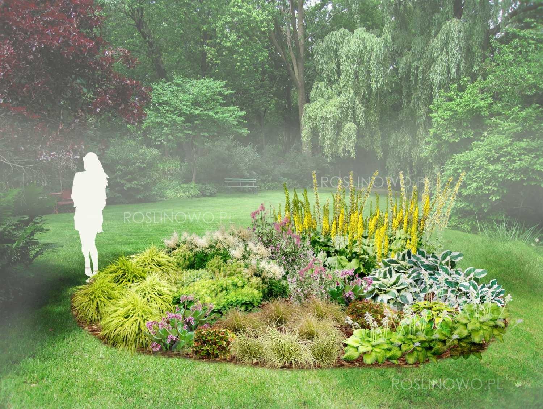 Gotowy projekt ogrodu - Rabata Cienisty zakątek w zestawie z sadzonkami bylin i traw ogrodowych.