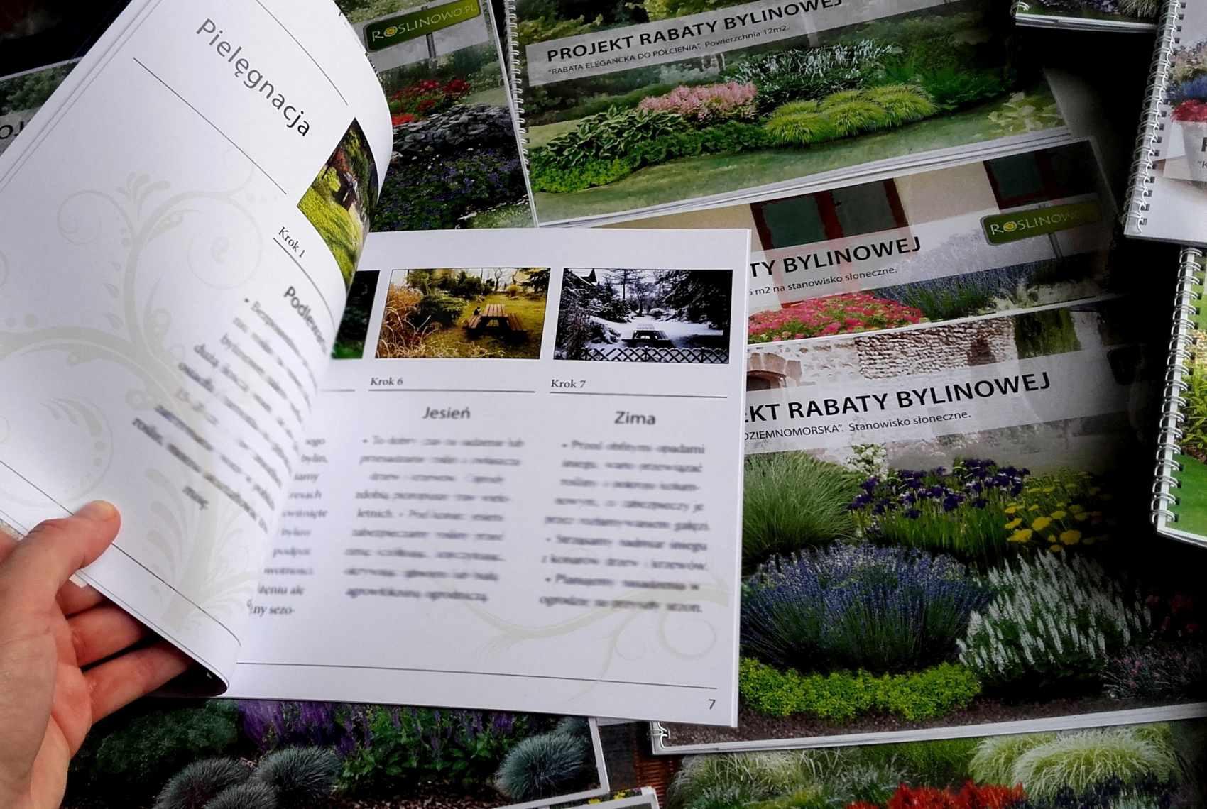 instrukcja - jak pielęgnować rośliny po posadzeniu na rabacie bylinowej.