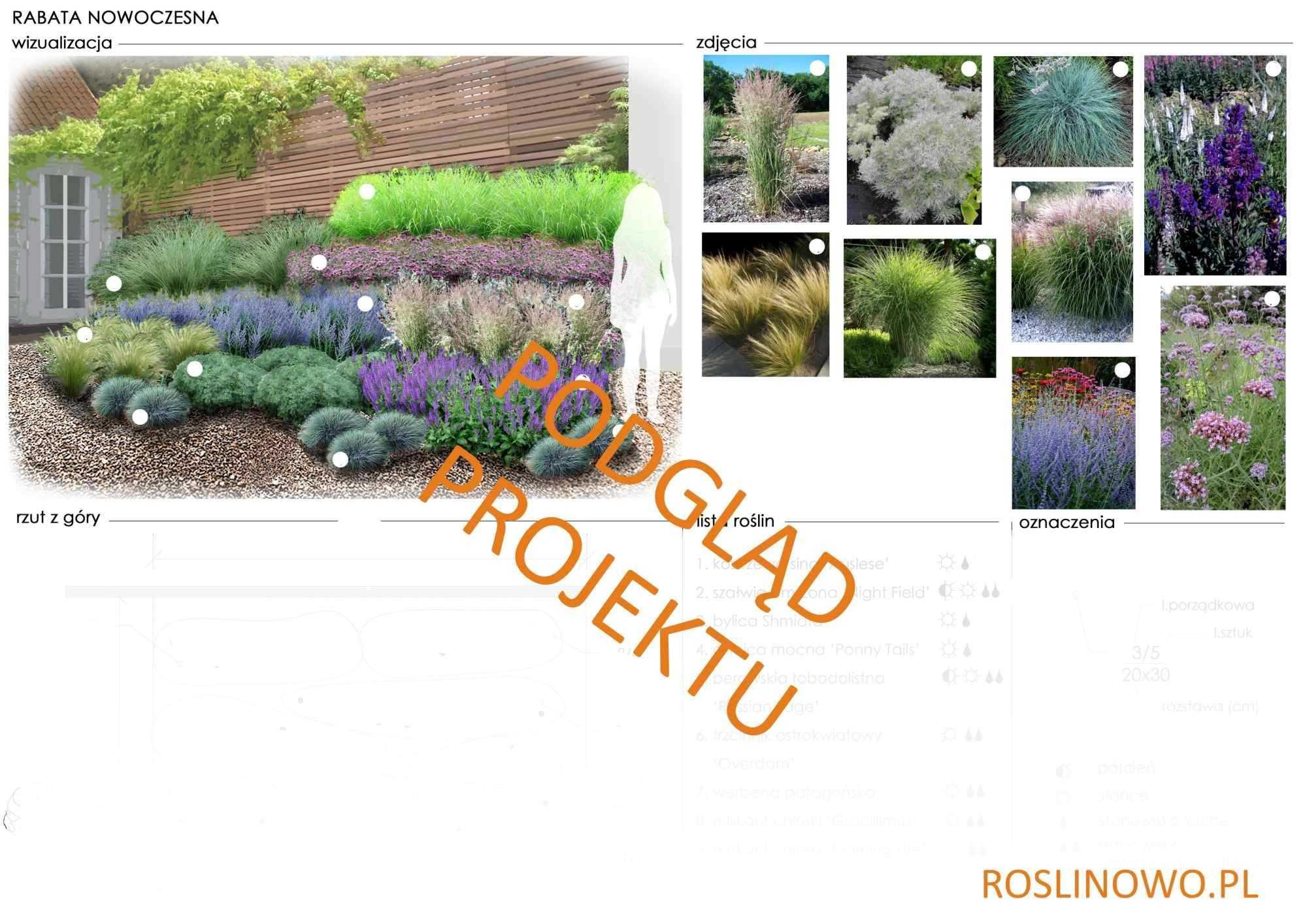 projekt nasadzeń roślin rabaty bylinowej - nowoczesna