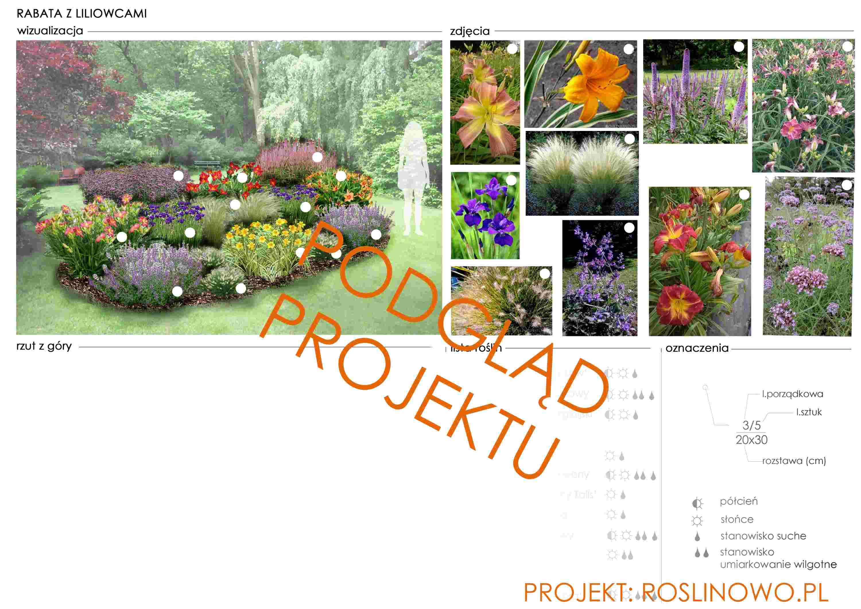 Gotowy projekt rabaty z liliowcami