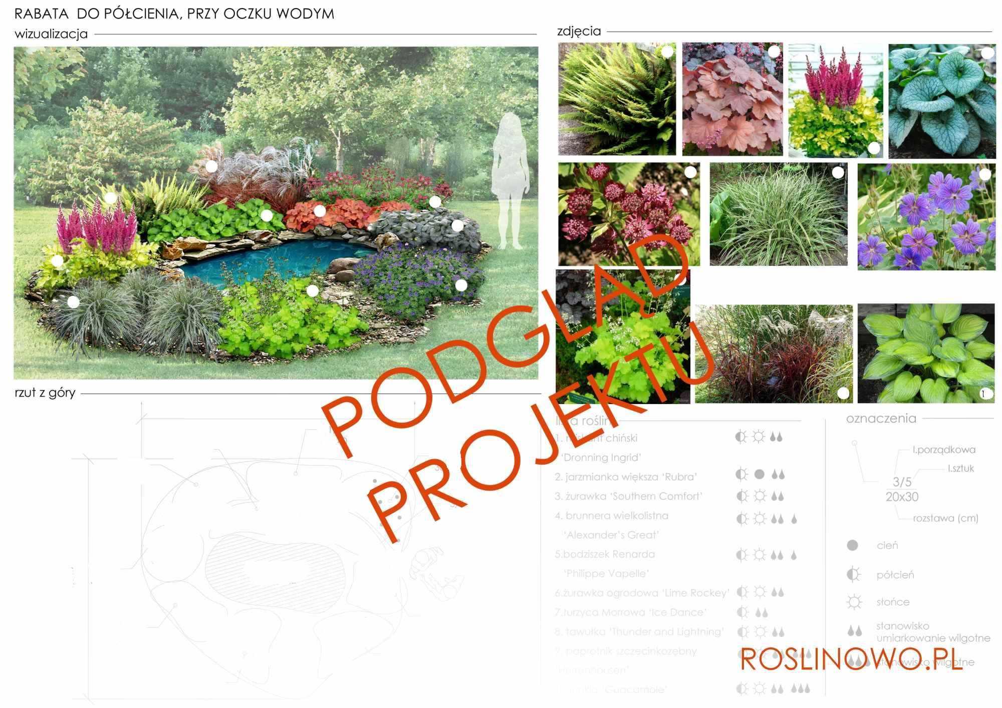 projekt nasadzeń roślin rabaty - aranżacja przy oczku wodnym