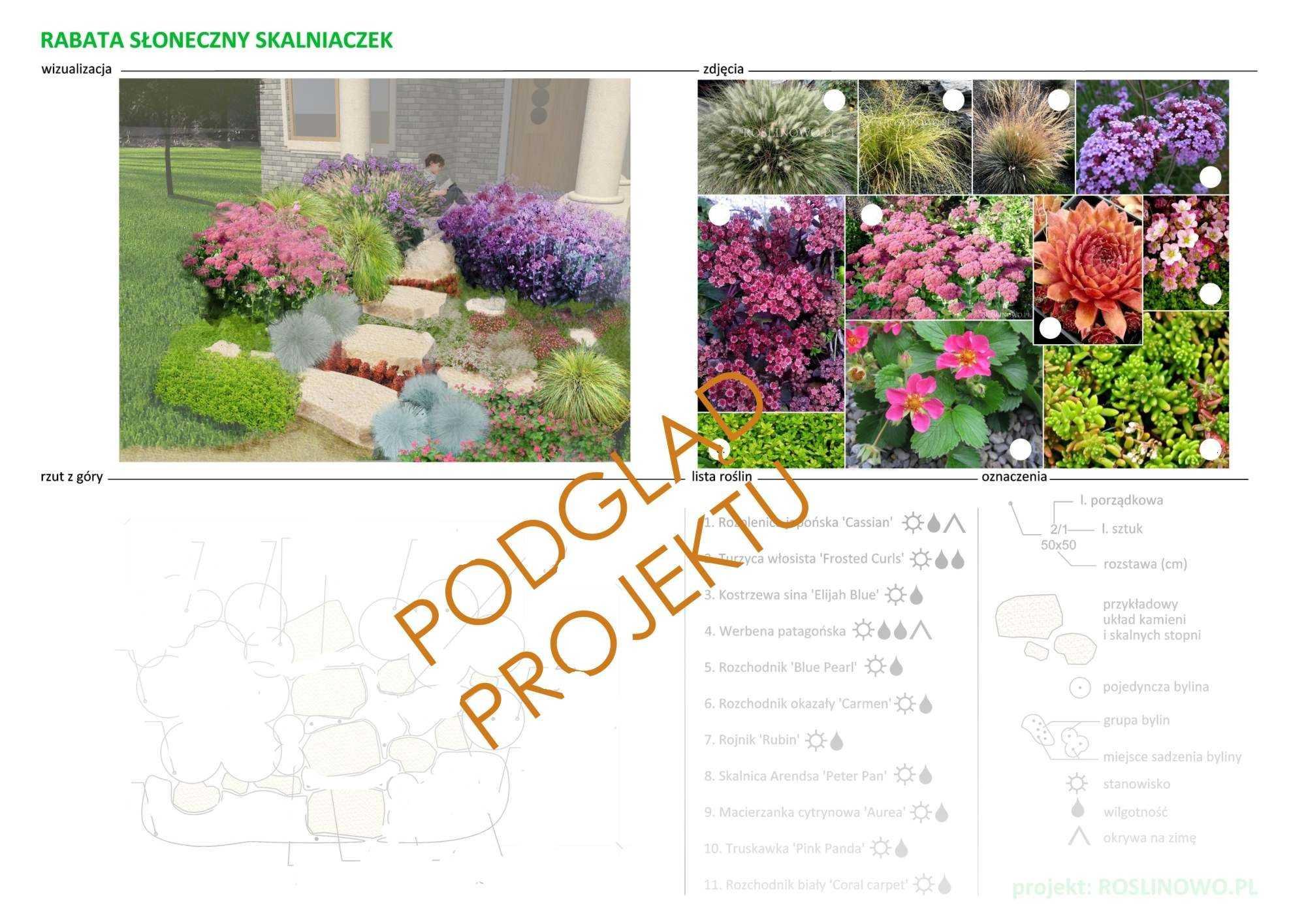 projekt nasadzeń roślin do rabaty słoneczny skalniaczek