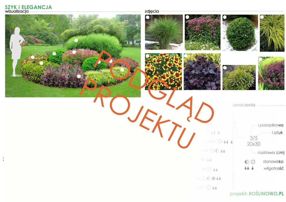 gotowy projekt ogrodu (rabata bylinowa) - szyk i elegancja