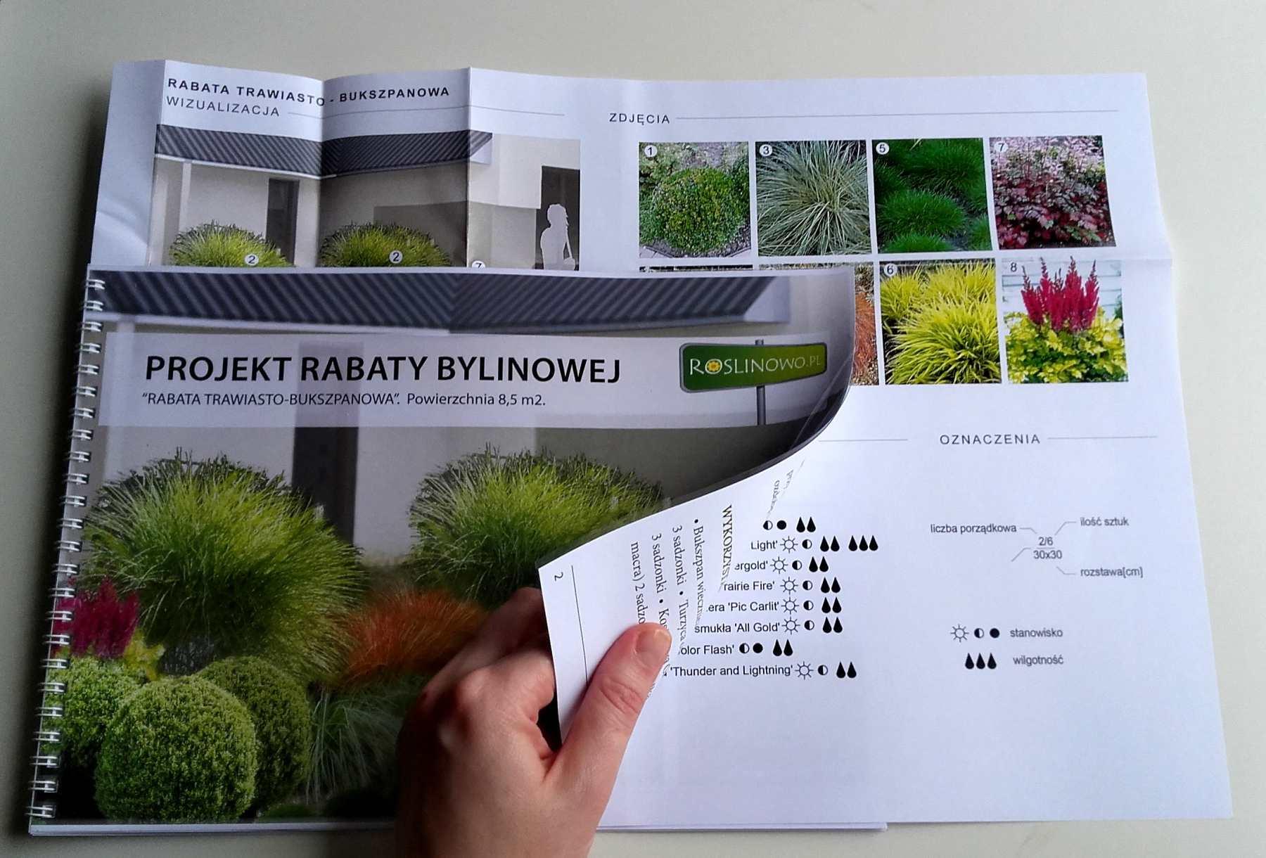 wydrukowany projekt rabaty bylinowej - rabata trawiasto - bukszpanowa.