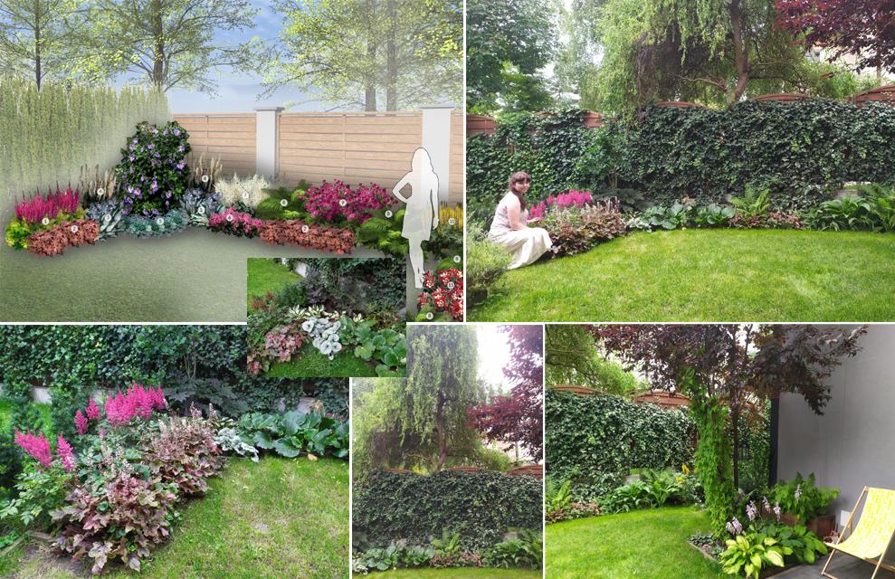 """Realizacja gotowe projektu ogrodu """"Rabata Barwna"""""""
